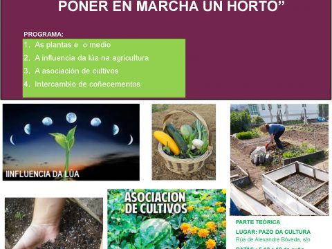 Huerto ecológico: qué es y cómo crear el tuyo.